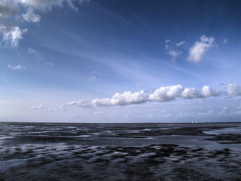 niskiego przypływu tideland zdjęcie royalty free
