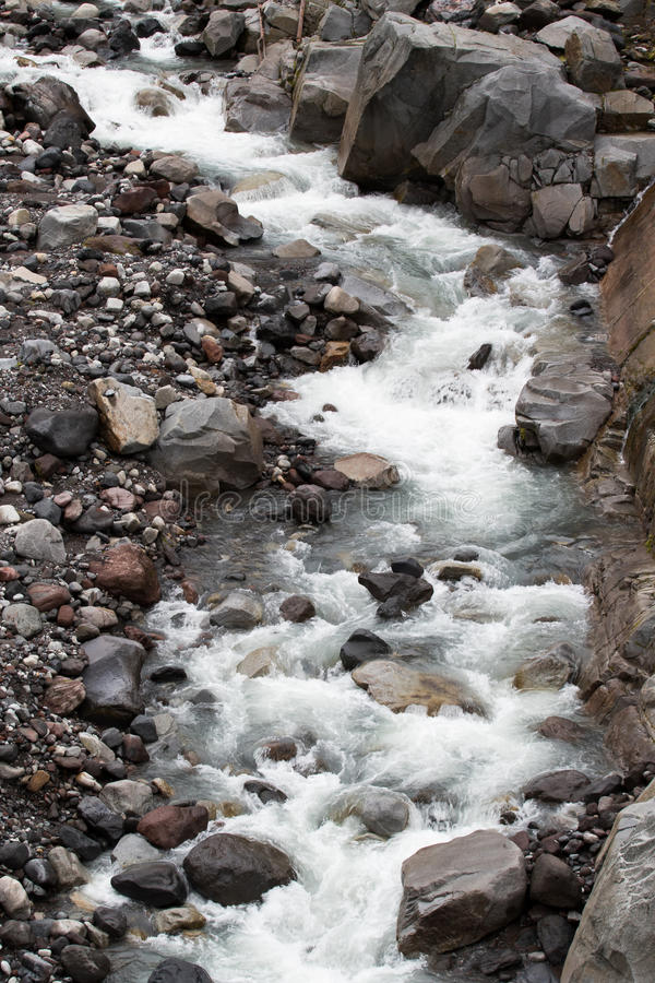 Nisqually glaciär matad flod royaltyfria foton