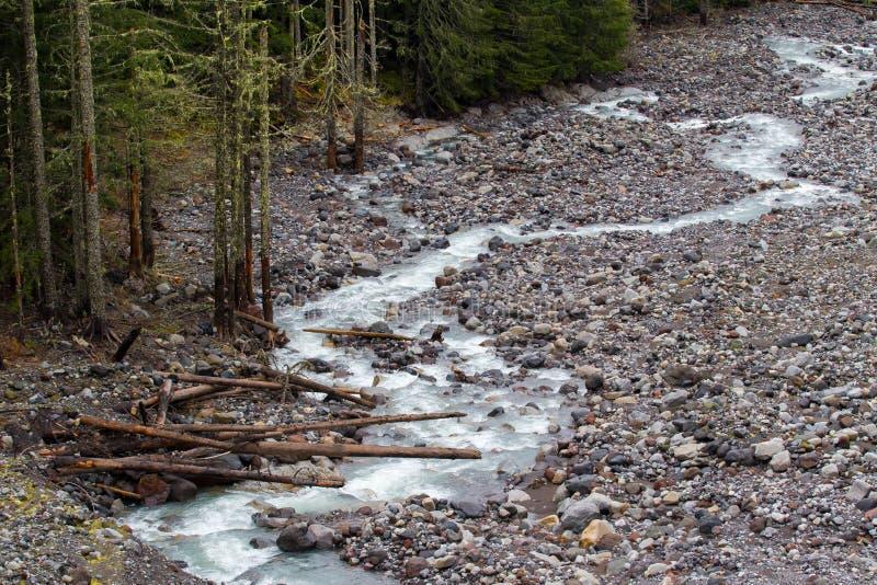 Nisqually glaciär Rocky River Basin arkivfoto