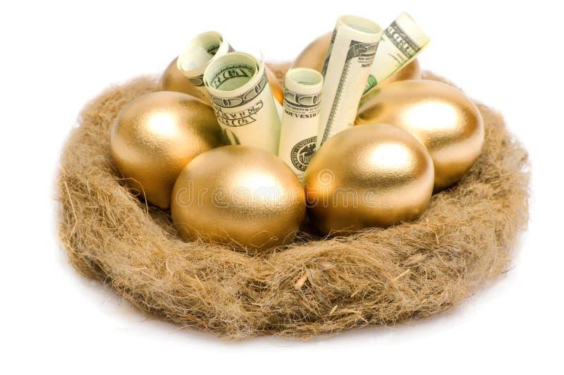 Nisten Sie mit goldenen Eiern auf einem weißen Hintergrund stockbilder