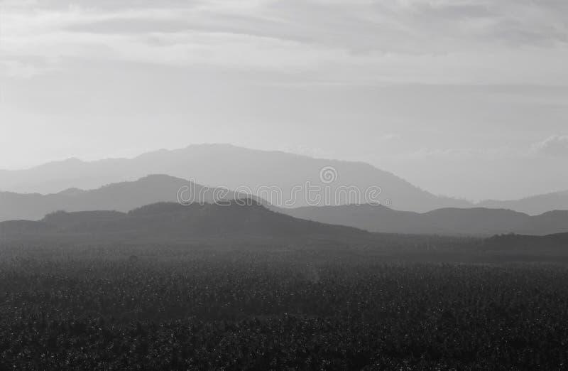Nivå av berget fotografering för bildbyråer