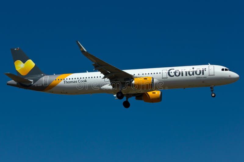 Nivå för kondor A321 royaltyfri fotografi