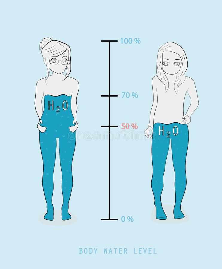Niveau de représentation infographic de pourcentage de l'eau de silhouette de femme dans l'illustration de vecteur de corps humai illustration libre de droits
