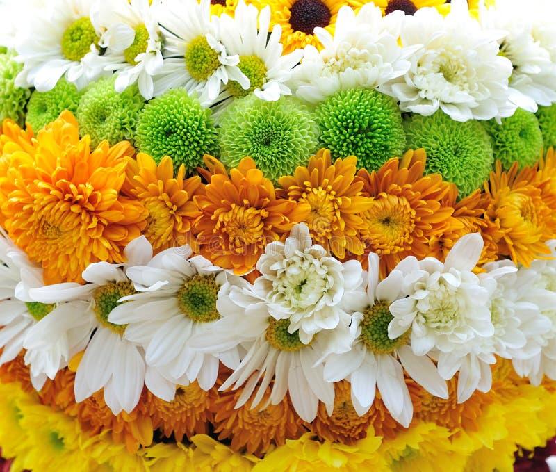 Niveaus van bloemen royalty-vrije stock foto