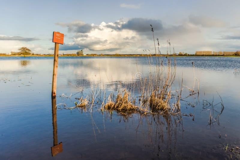 Nivel del agua de levantamiento en los terrenos de aluvión del río IJssel, con imagen de archivo libre de regalías