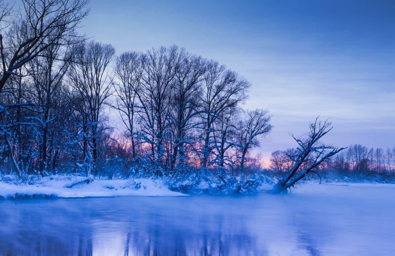 Nivelando as cores crepusculares da névoa do por do sol do winer fotos de stock royalty free