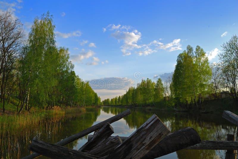 Nivelando em terra o lago ilustração do vetor