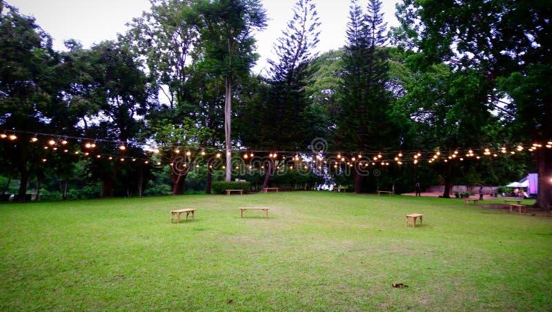 Nivelando o jardim em 7pm foto de stock