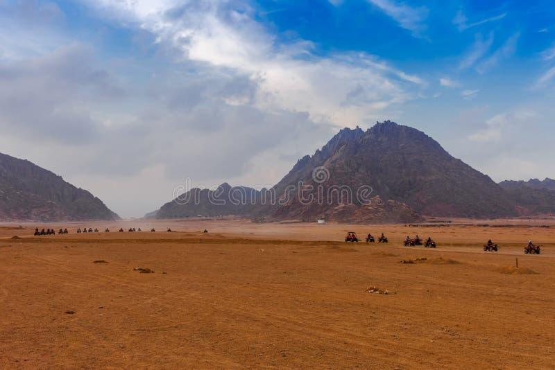 Nivelando o tempo perto das montanhas no deserto de Sinai, Sharm el Sheikh, peninsula do Sinai, Egito Safari do quadrilátero de A imagens de stock royalty free