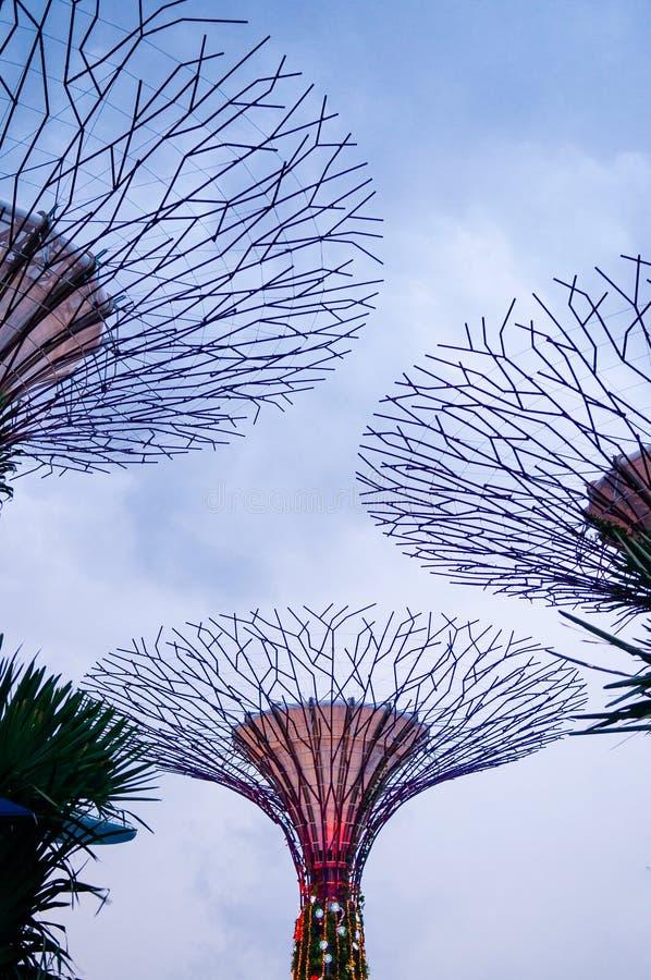 Nivelando a vista do jardim do bosque de Supertree pela baía, Singapura fotos de stock