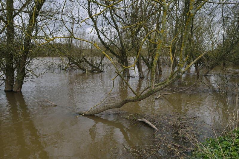 Niveles del apogeo en el río Severn fotos de archivo