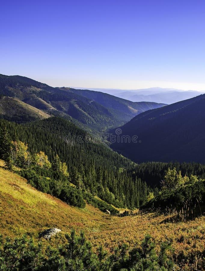 Nizke Tatry - Tatras basso fotografia stock