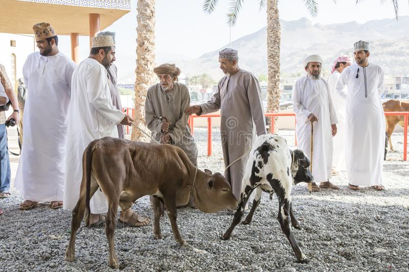 Omani people at a traditional cattle and goat market royalty free stock images