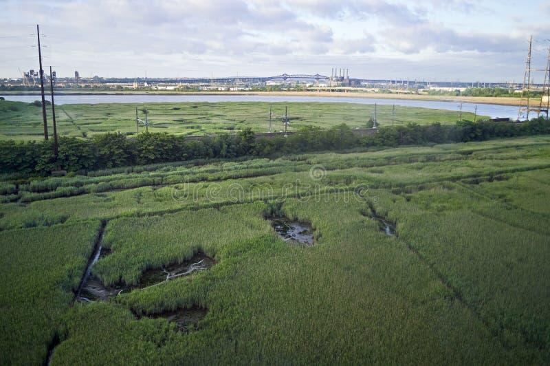 NJ Wetland View royalty free stock image