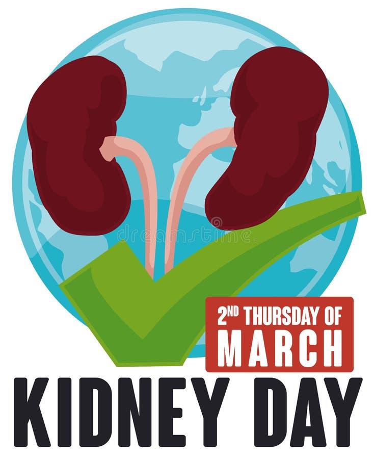 Njure över grön kontroll och världskartan för njuredagen, vektorillustration royaltyfri illustrationer