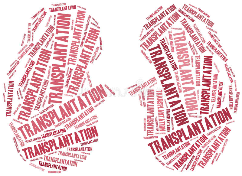 Njuretransplantation Collage för etikettsmolnbegrepp vektor illustrationer