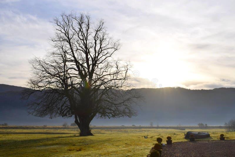 Noël en montagnes écossaises, Strontian 2017 photographie stock