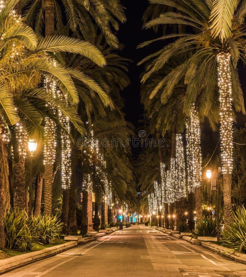 Noël en Palma de Majorca, allée lumineuse de palmiers photographie stock libre de droits