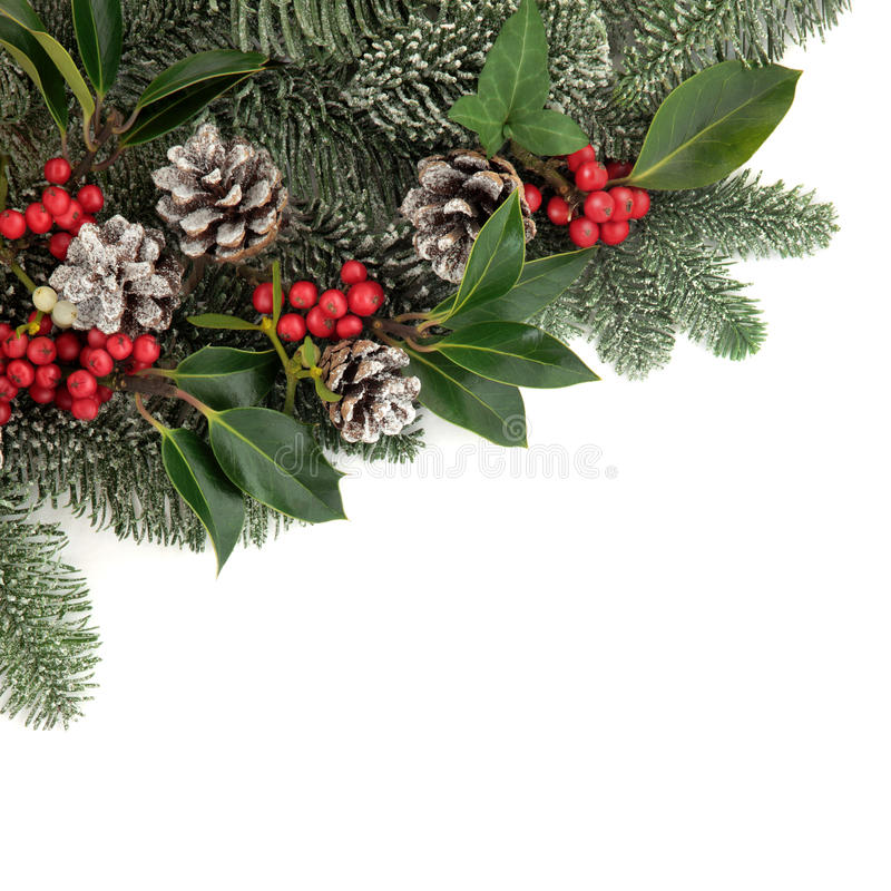 Noël Flora image libre de droits