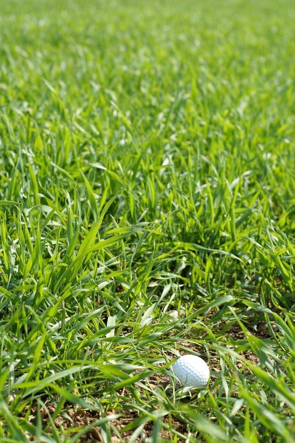 Download No áspero foto de stock. Imagem de golf, lâminas, terra - 111020