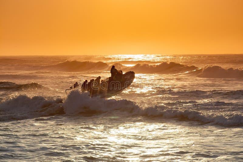 No amanhecer um barco do mergulho transporta mergulhadores recreacionais da praia de Umkomaas ao banco de areia de Aliwal fora da fotografia de stock
