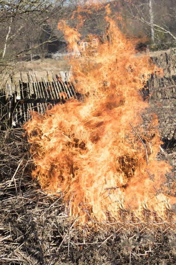 no ar livre um fogo est? queimando-se a chama ? muito grande tenha a tonifica??o fotografia de stock