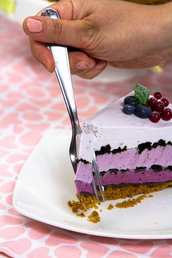 Cheese cream cake dessert food stock image