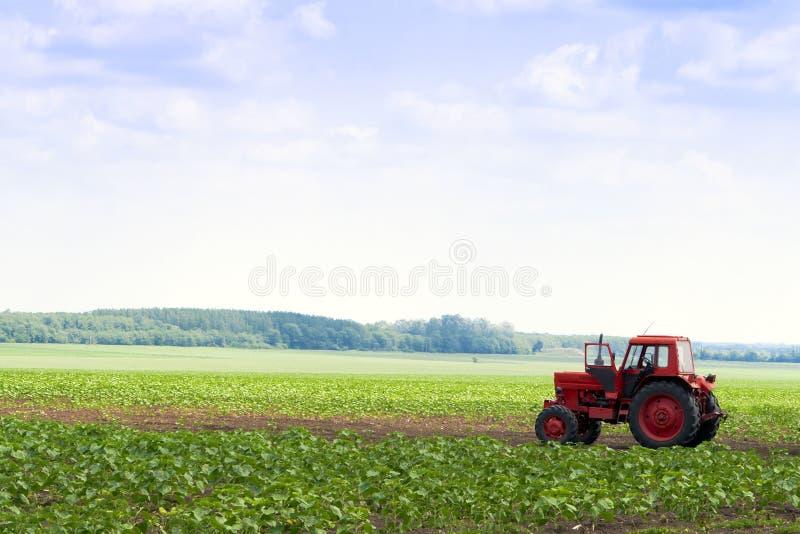 No campo da maquinaria agricultural disponível. fotografia de stock