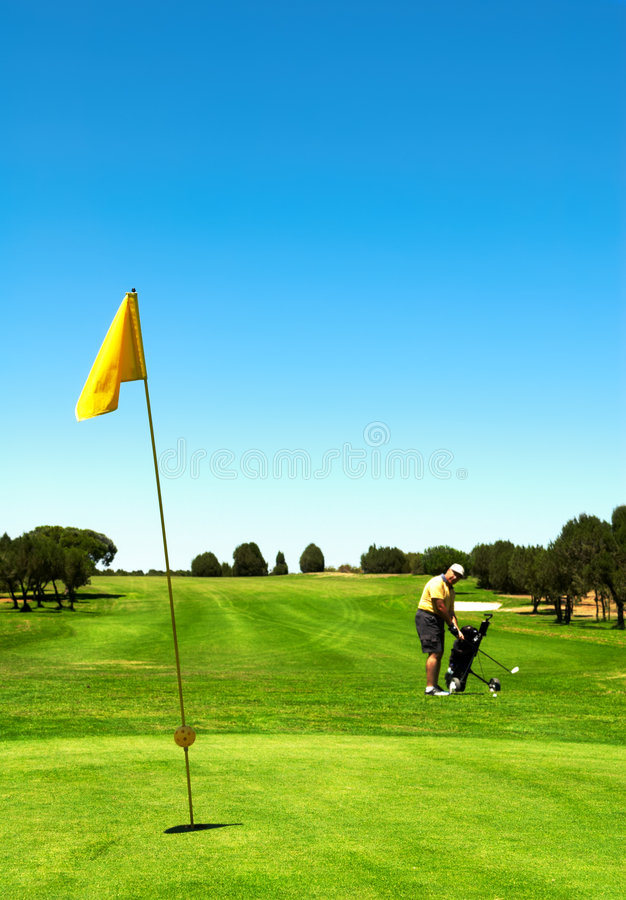 No campo do golfe fotos de stock royalty free