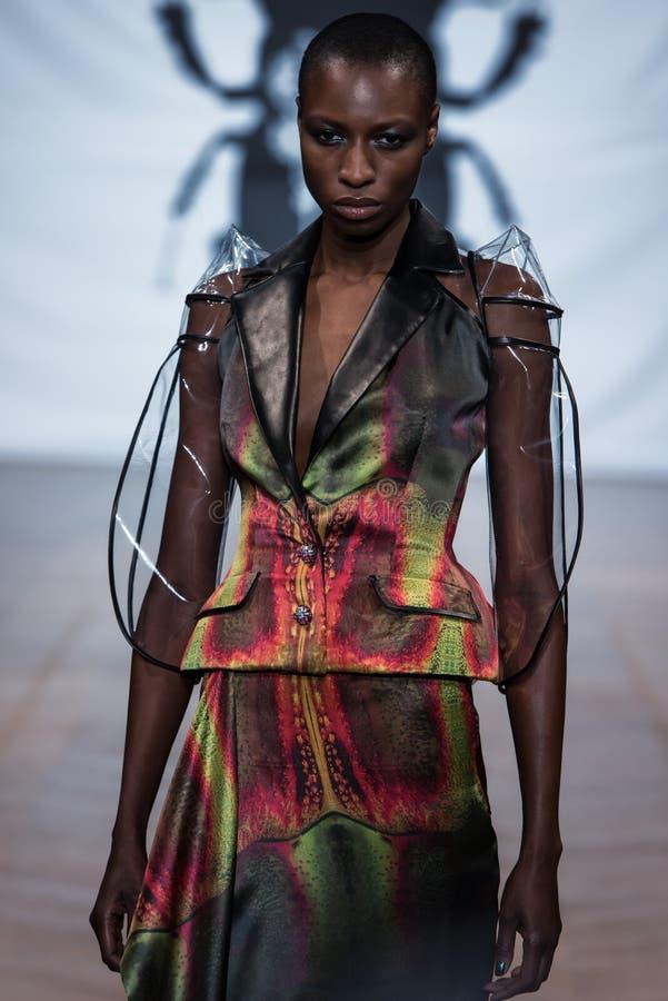 No desfile de moda 2013 do verão da mola do vu da candonga da aura foto de stock