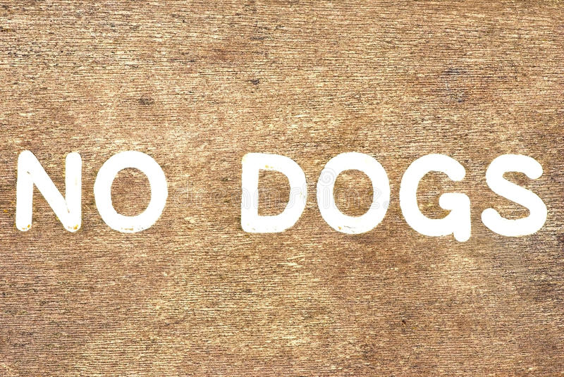 No Dogs. Wooden sign that says no dogs painted in white stock photos