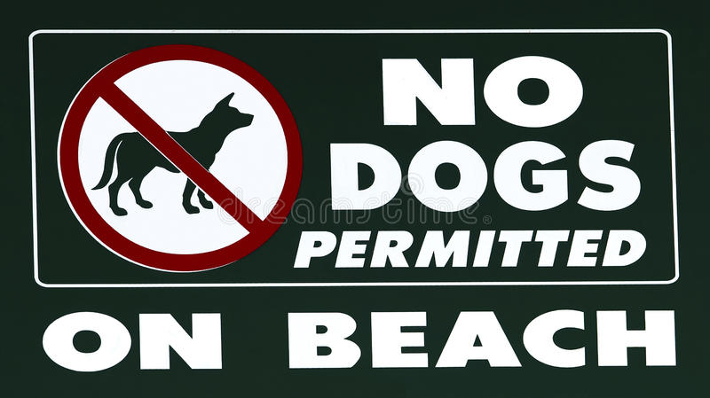No Dogs Allowed. A sign informing people that dogs are not allowed on the beach stock images