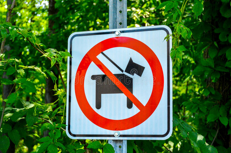 No dogs allowed. In the forest, Montreal, Canada royalty free stock photo