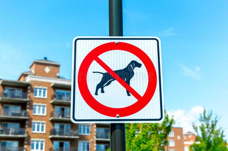 No dogs allowed in the forest. Montreal, Canada royalty free stock image