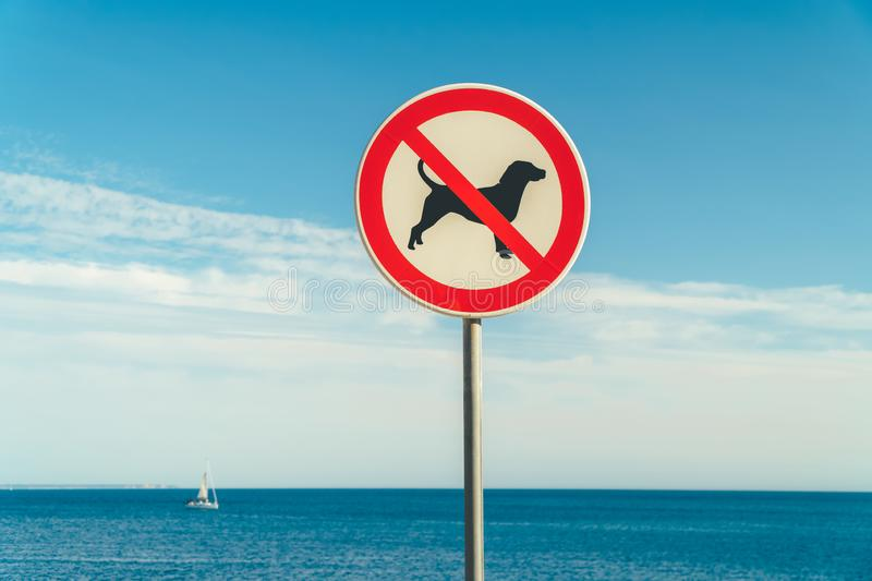 No Dogs Allowed. Sign Close Up stock photography