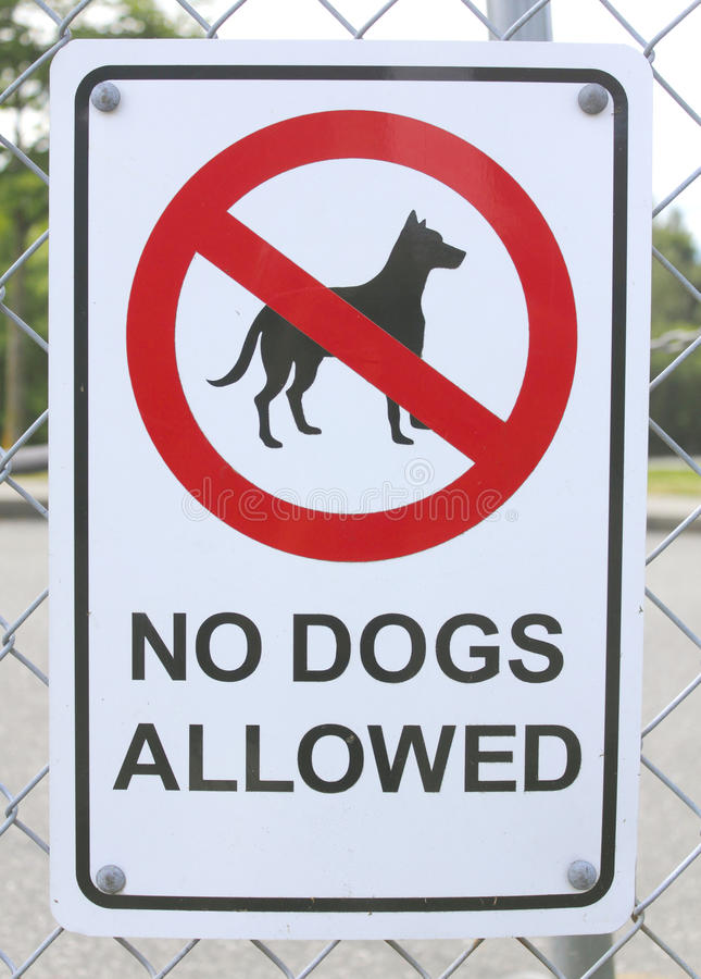No Dogs Allowed Sign. A No Dogs Allowed Sign posted on a metal fence stock photo