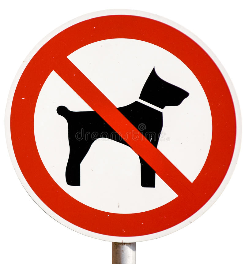 No dogs allowed sign. Isolated on white stock photo