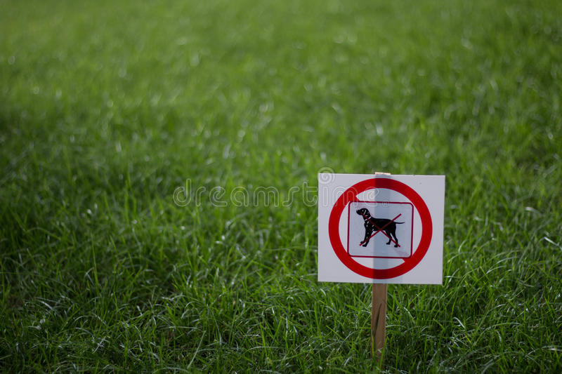 No Dogs Allowed Sign. A detail of no dogs allowed sign on grass in the summer stock photo