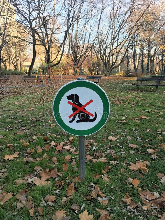 No dogs allowed sign in front of playgrounds. Dogs are not allowed on children`s playground. Picture was taken in the winter morning on empty playground stock photography