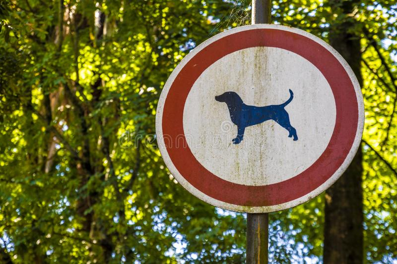No Dogs allowed. There Are No Dogs allowed royalty free stock photo
