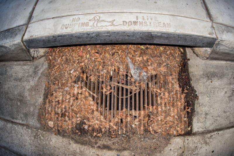 No dumping i live downstream manhole for duck bird. No dumping i live downstream manhole save the ducks stock photos