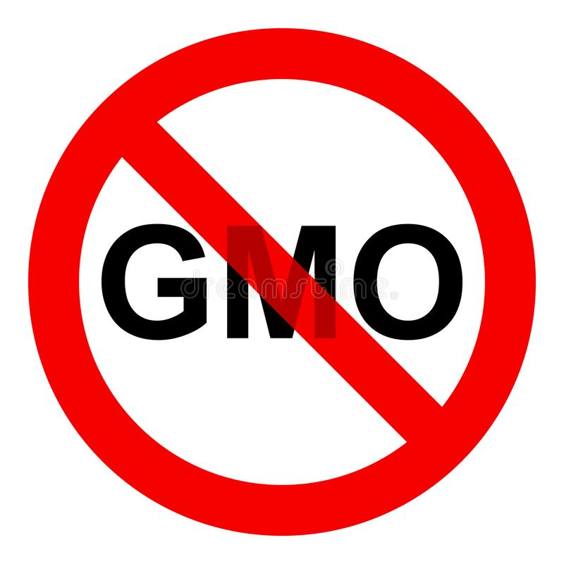 No GMO sign icon, without genetically modified food symbol, isolated on white background, vector illustration. royalty free illustration