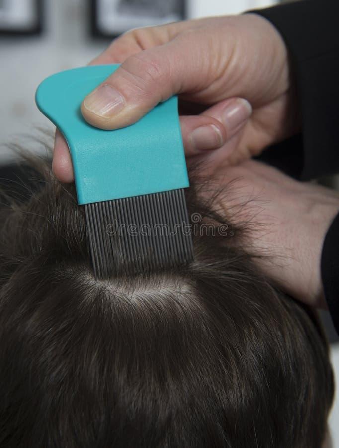 No head lice royalty free stock photography