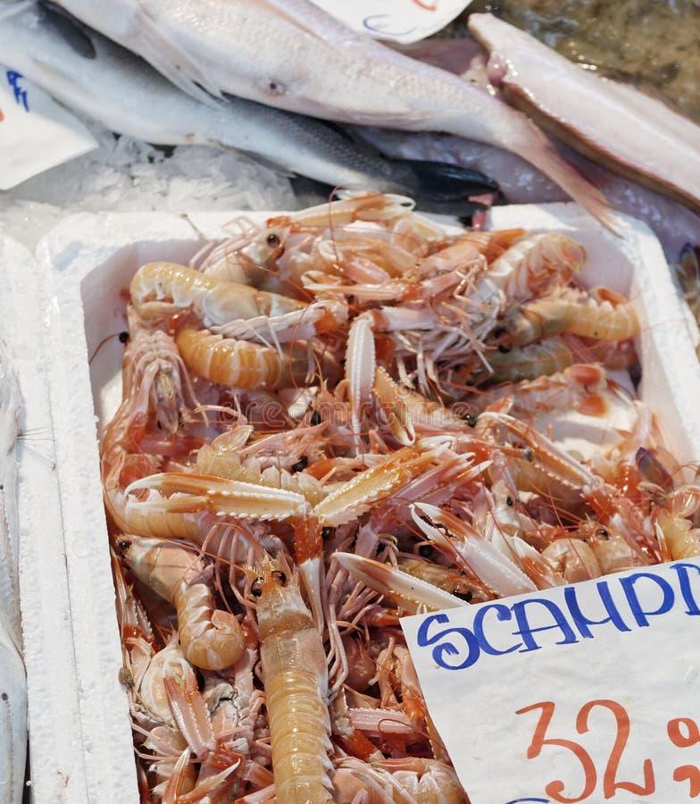 No mercado de peixes de Italia - vários peixes e crustáceos (em imagem de stock