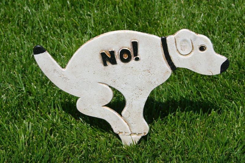 Download No No! stock image. Image of animal, cute, green, innocence - 21156123