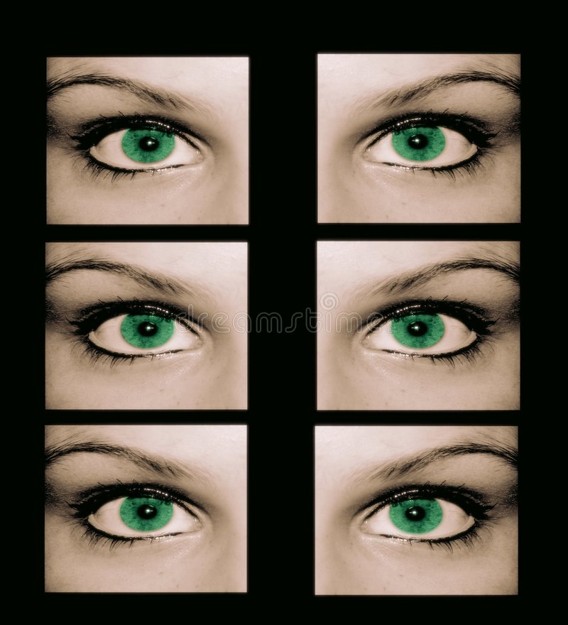 No-one is safe from strange eyes royalty free stock image
