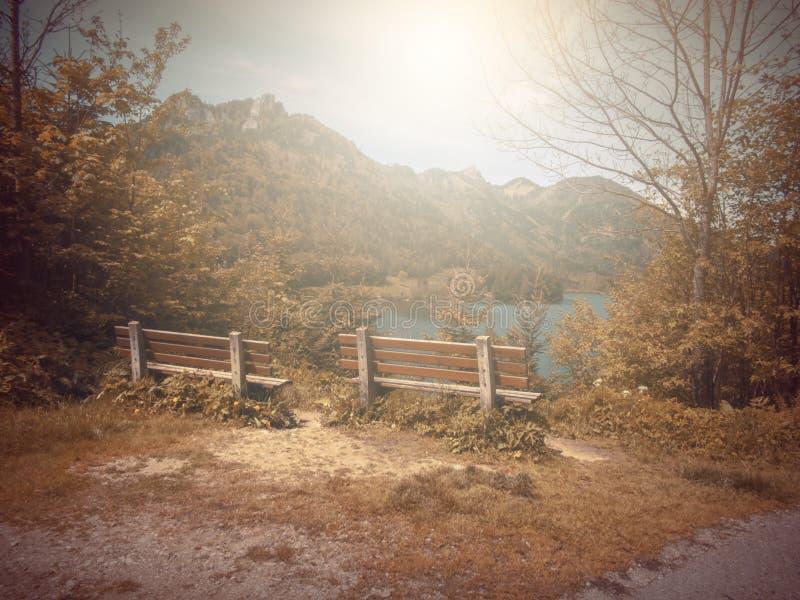 No outono Banco da fábula da fantasia no parque com cena do nascer do sol imagens de stock