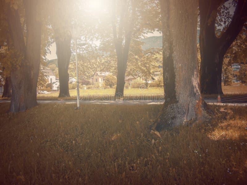 No outono Fábula da fantasia no parque com cena do nascer do sol foto de stock royalty free