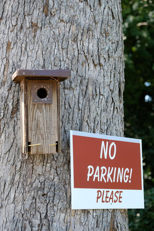 No Parking please. Sign with a bird nest on the side royalty free stock photography