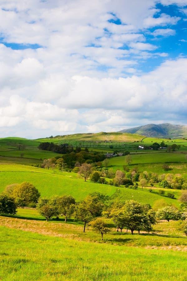 No parque nacional dos Dales de Yorkshire fotos de stock royalty free